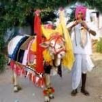 Gangireddu